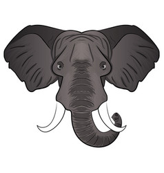 elephant cartoon head vector image vector image