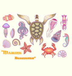 Set of marine life for your creativity vector