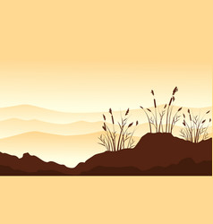 silhouette of course grass with desert background vector image