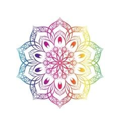 Spectral flower mandala over white vector