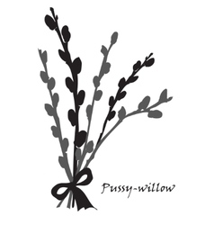 Abstract texture with pussy willow Seamless vector image vector image