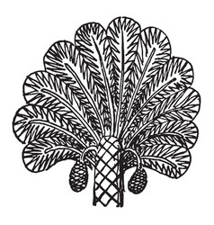 Assyrian ornament is a palm tree from a relief vector
