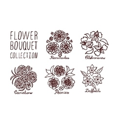 Handsketched bouquets collection vector
