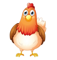 A big fat hen vector image vector image