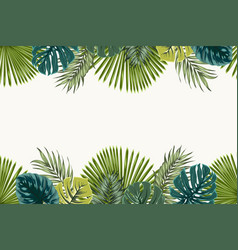 exotic tropical leaves top bottom border frame vector image