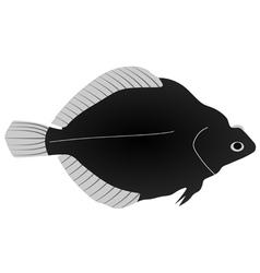 flounder vector image