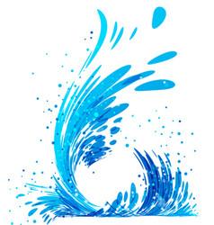 water splash on white vector image