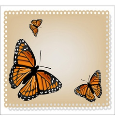 card with butterflies vector image vector image