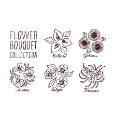 Handsketched bouquets collection vector image