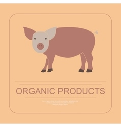 Logotipe of organic product vector
