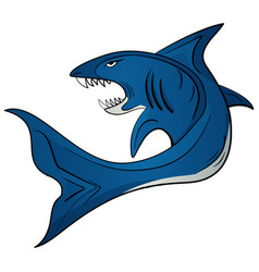 Toothy white shark vector