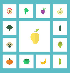 Flat icons jungle fruit bean cauliflower and vector