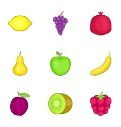 Fresh healthy fruit icons set cartoon style vector image
