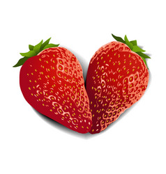 strawberry fruit heart vector image vector image