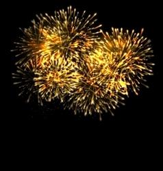 Illuminated Festive Firework Glowing Holiday vector image