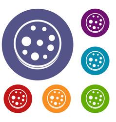 Slice of salami icons set vector