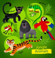 Wild jungle animals vector