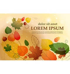 Colorful leafs with sample text autumn floral vector