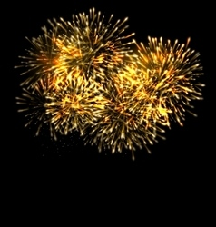 Illuminated Festive Firework Glowing Holiday vector image
