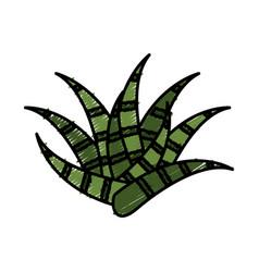 Plant icon image vector