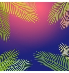 Palm trees silhouette background vector