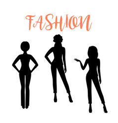 fashion woman silhouette in suits vector image