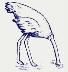 Ostrich burying its head in sand vector image