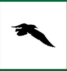 flying seagull bird black silhouette isolated on vector image vector image