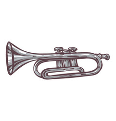 Gray trumpet isolated on a white vector