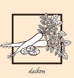 hand drawn daikon vector image vector image