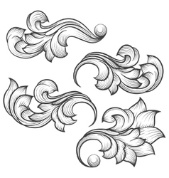 Baroque engraving leaf scroll vector image vector image