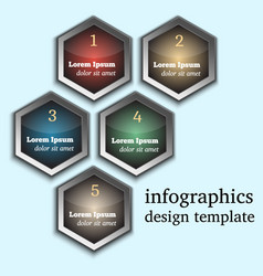 modern infographic template with hexagons vector image