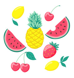 set of stylized fruits a symbol of summer vector image vector image