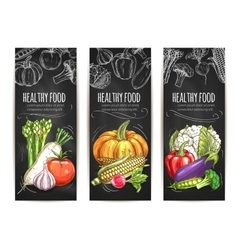 Vegetables vegetarian sketch posters vector