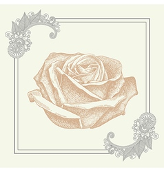 Ornate frame with sketchy drawing of rose flower vector