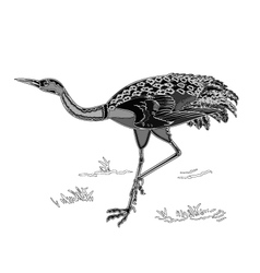 Dancing crane wildlife animal neck engraving vector