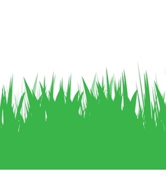Green grass natural background vector