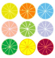 citric collection vector image vector image