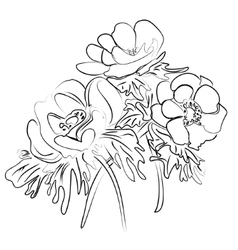 Sketch of a flower anemones vector