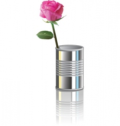 rose in can vector image