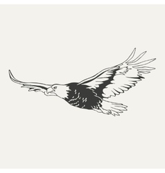 eagle Black and white style vector image