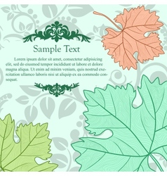 Retro cardboard with grape leafs vector