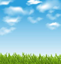 Summer background with green grass and sky vector