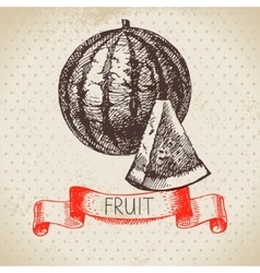 Hand drawn sketch fruit watermelon eco food vector