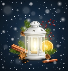 Christmas lantern with spices in snowfall on dark vector