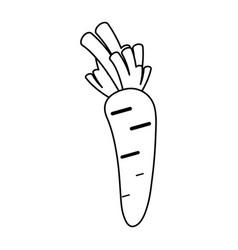 hot vegetable paprika vector image vector image