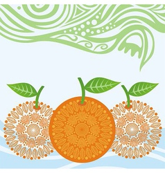 Oranges pattern vector image