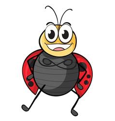 a ladybug vector image