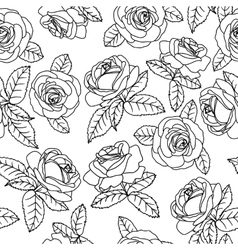 black outline roses vector image vector image
