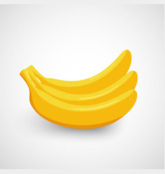 Bunch of bananas vector